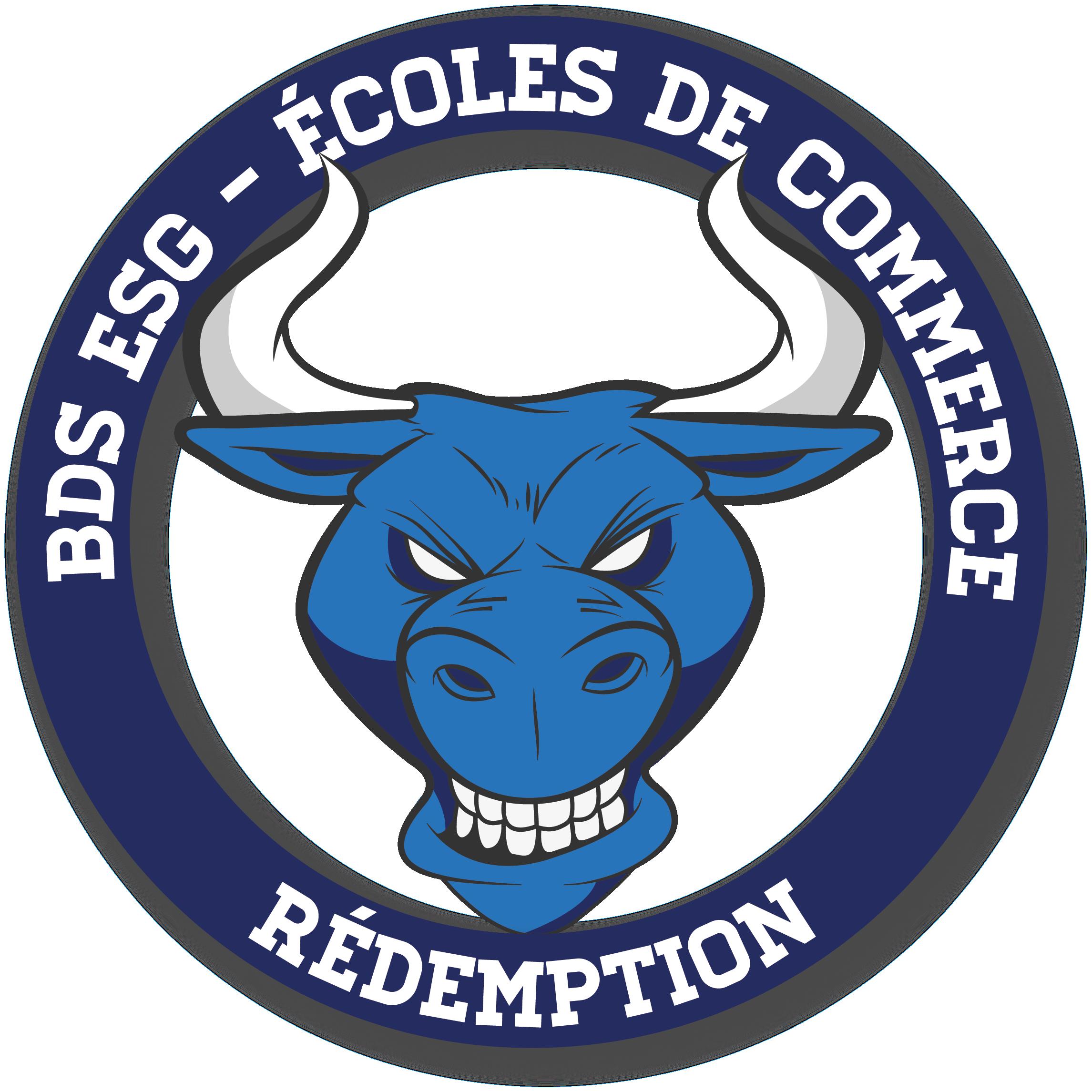 Logo Bureau Des Sports (BDS)
