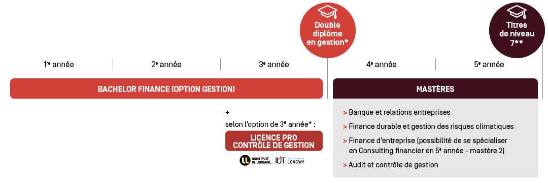 Bachelor option - Parcours d'étude