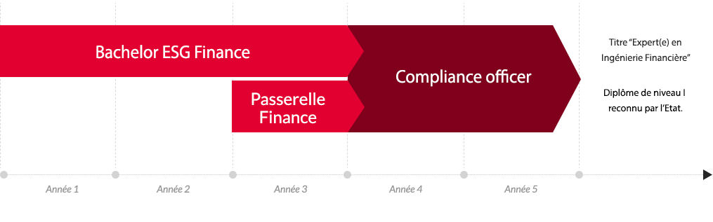 Mastère Compliance officer - Parcours d'étude