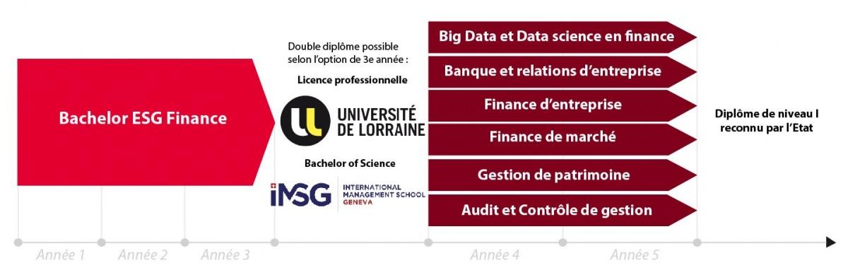Schéma d'étude Bachelor Finance