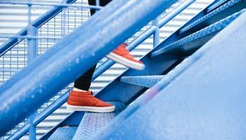 Quel parcours d'études propose le bachelor ESG Finance ?